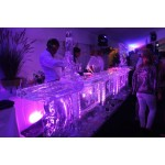 Ice Sculpture Video-Photo Shoot