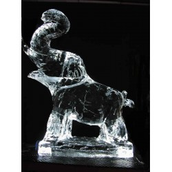 Elephant Ice Sculpture or Luge