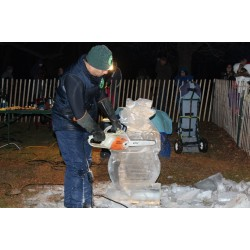 Live Ice Carving Show