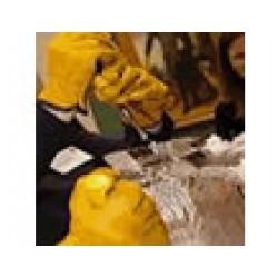 Ice Sculpture Workshop Min 10 PP
